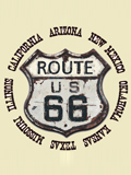 [David Carey, Inc. Men's Route 66 Rusty Sign T-Shirt]