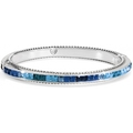 [Brighton  Spectrum Hinged Bangle]